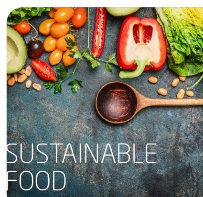 Handbuch Sustainable Food